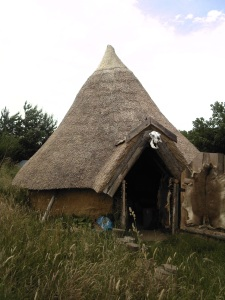 Thatched circular hut